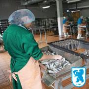 Установка систем безопасности на рыбном производстве полного цикла «Карельский Комбинат»