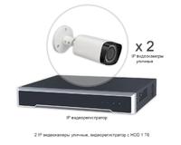 Установить видеонаблюдение - 2 IP уличные камеры 2 Мп, регистратор с HDD 1 Тб